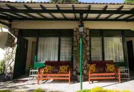 Penginapan Murah di Jogja Manggo Tree Dipudji Homestay