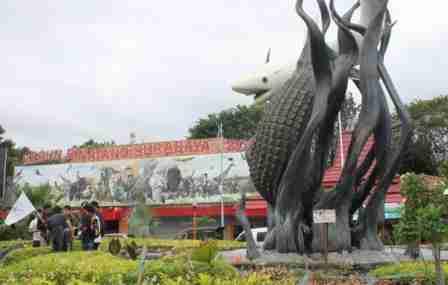 harga tiket masuk Kebun Binatang Surabaya KBS